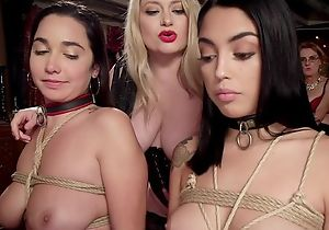 Four submissive brunettes obtain respecting fucked at reprobate coition party
