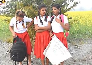 Alfresco indian school girl sex romance hindi audio